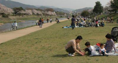 Hanami2011